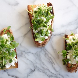 Ricotta Crostini with Pea Shoots & Mint-Chive Oil